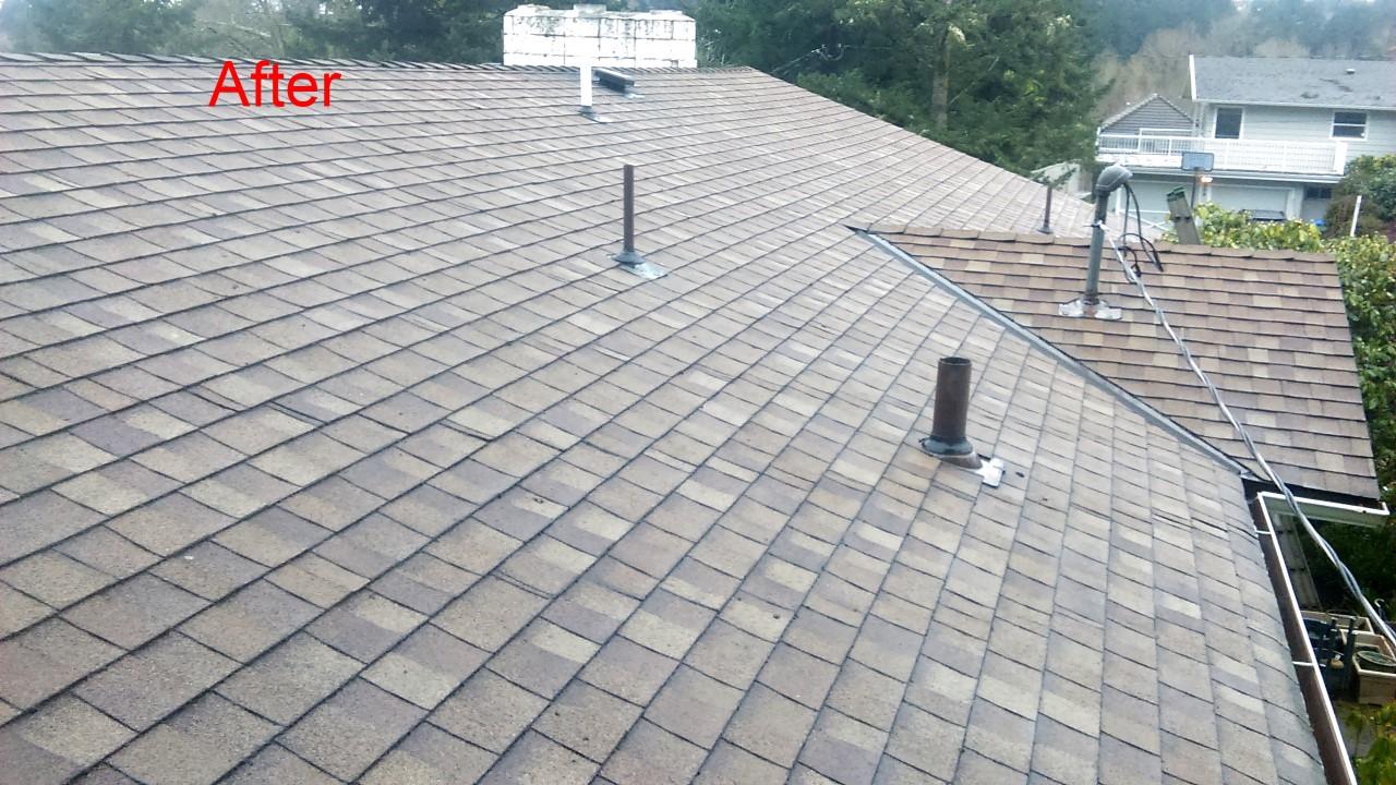 Roof Cleaning Amp Maintenance Roofers Salem Oregon Moss